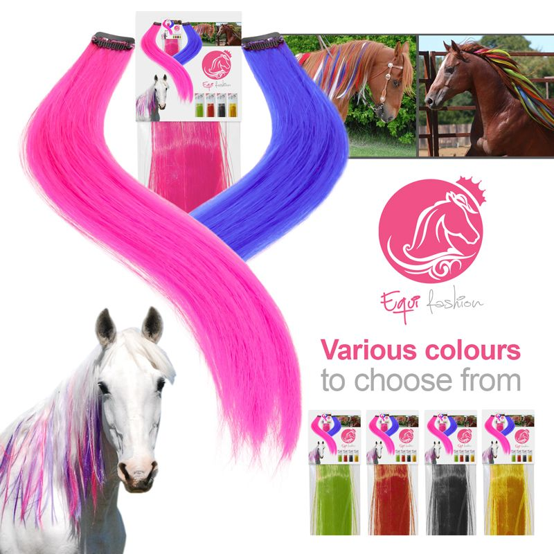 Equifashion Horse Mane Tail Clip In Colour Extensions